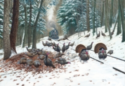 Jigsaw Puzzles - Winter Turkey Tracks