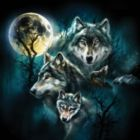 Wolf Family Collage - 500pc Jigsaw Puzzle By Sunsout