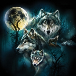 Jigsaw Puzzles - Wolf Family Collage