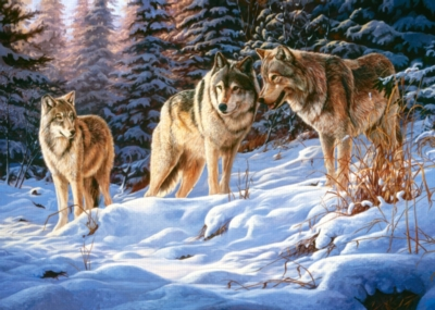 Jigsaw Puzzles - Wolves