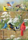 Hautman Brothers: Songbird Menagerie - 300pc Jigsaw Puzzle by Buffalo Games
