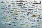 Evolution of Military Aircraft - 2000pc Jigsaw Puzzle by Eurographics