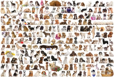 Eurographics Jigsaw Puzzles - The World of Dogs