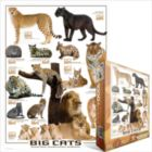 Big Cats - 1000pc Jigsaw Puzzle by Eurographics