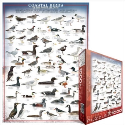Eurographics Jigsaw Puzzles - Coastal Birds of the North Atlantic