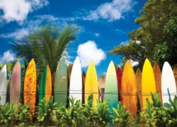 Eurographics Jigsaw Puzzles - Surfer's Paradise, HI