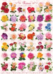 Eurographics Jigsaw Puzzles - Roses