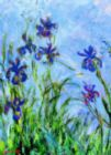 Monet: Irises - 1000pc Jigsaw Puzzle by Eurographics