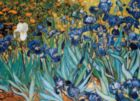 Van Gogh: Irises - 1000pc Jigsaw Puzzle by Eurographics