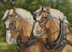 Cobble Hill Jigsaw Puzzles - Buck and Babe