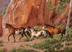 Cobble Hill Jigsaw Puzzles - Horse Canyon