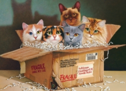Cobble Hill Jigsaw Puzzles - Six Pack