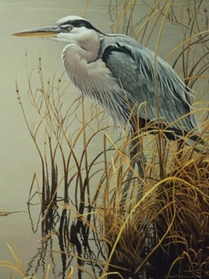 Cobble Hill Jigsaw Puzzles - Great Blue Heron
