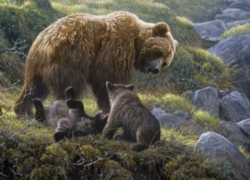 Cobble Hill Jigsaw Puzzles - Grizzly and Cubs