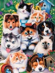 Jigsaw Puzzles - Pet Pals