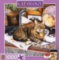 Catology: Gulliver - 1000pc Jigsaw Puzzle by Masterpieces