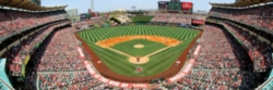 Panoramic Jigsaw Puzzles - Los Angeles Angels of Anaheim
