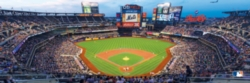 Panoramic Jigsaw Puzzles - New York Mets