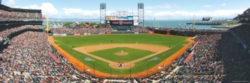 Panoramic Jigsaw Puzzles - San Francisco Giants