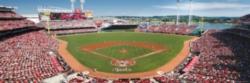 Panoramic Jigsaw Puzzles - Cincinnati Reds