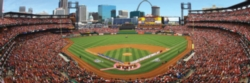 Panoramic Jigsaw Puzzles - St. Louis Cardinals