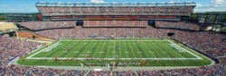 Panoramic Jigsaw Puzzles - New England Patriots