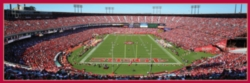 Panoramic Jigsaw Puzzles - San Francisco 49ers