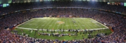 Panoramic Jigsaw Puzzles - Minnesota Vikings