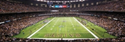 Panoramic Jigsaw Puzzles - New Orleans Saints
