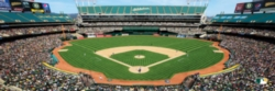 Panoramic Jigsaw Puzzles - Oakland Athletics