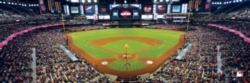 Panoramic Jigsaw Puzzles - Arizona Diamondbacks