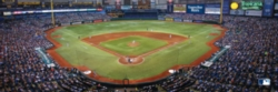 Panoramic Jigsaw Puzzles - Tampa Bay Rays