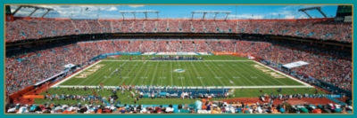 Panoramic Jigsaw Puzzles - Miami Dolphins