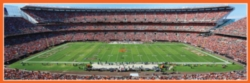 Panoramic Jigsaw Puzzles - Cleveland Browns