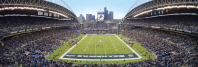 Panoramic Jigsaw Puzzles - Seattle Seahawks