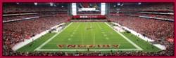 Panoramic Jigsaw Puzzles - Arizona Cardinals