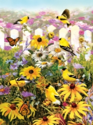 Jigsaw Puzzles - Gold Finch