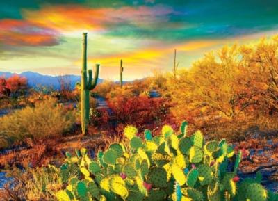 Eurographics Desert Colors Jigsaw Puzzle