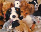 Playtime Puppies - 400pc Jigsaw Puzzle by Springbok