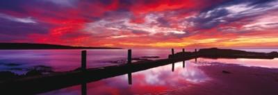 Schmidt Eden Sea Baths Panoramic Jigsaw Puzzle w/ Puzzle Glue