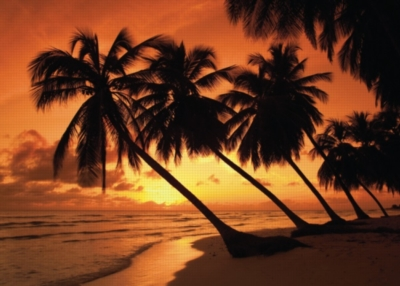 Schmidt Tropical Sunset Jigsaw Puzzle