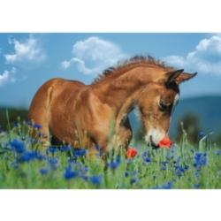 Schmidt Welsh Pony Jigsaw Puzzle
