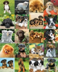 Andrews + Blaine Keith Kimberlin My Furry Friends Jigsaw Puzzle