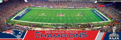 Masterpieces 2015 Super Bowl Puzzle Panoramic Jigsaw