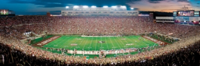Masterpieces Florida State Panoramic Jigsaw Puzzle