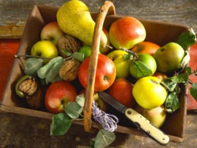 Ceaco Farm to Table Fruit Jigsaw Puzzle