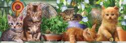 Ceaco Long Shots Panoramic Jigsaw Puzzle | Kitten Garden