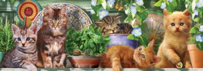 Ceaco Long Shots Panoramic Jigsaw Puzzle | Kitten Garden
