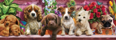 Ceaco Long Shots Panoramic Jigsaw Puzzle | Puppy Love