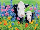 Moo: Pasture's Edge - 550pc Jigsaw Puzzle by Ceaco